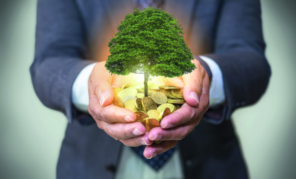 Nachhaltige Investments: Megatrend oder Marketing-Gag